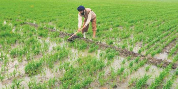 Dependency of Indian agriculture on Monsoon