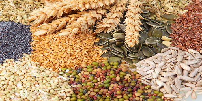 pulses  for sustainable agriculture