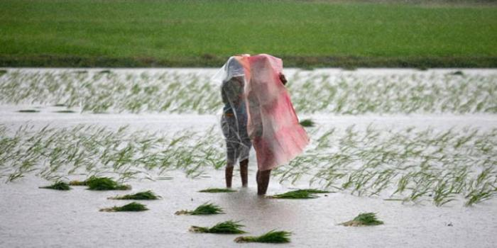 free SMS service for farmers on extreme weather conditions