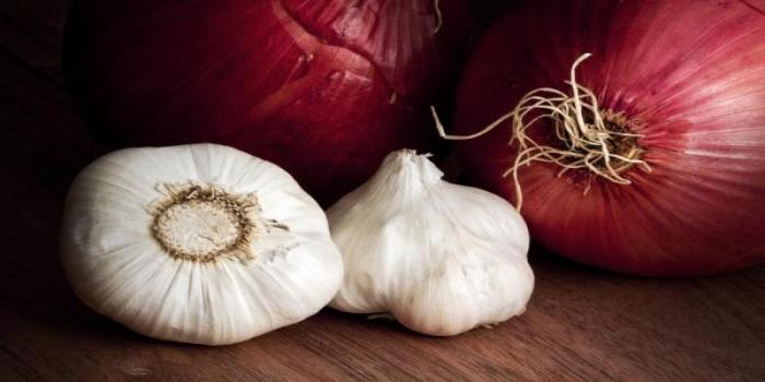 Management of Major Bacterial and Viral Diseases of Onion and Garlic in India